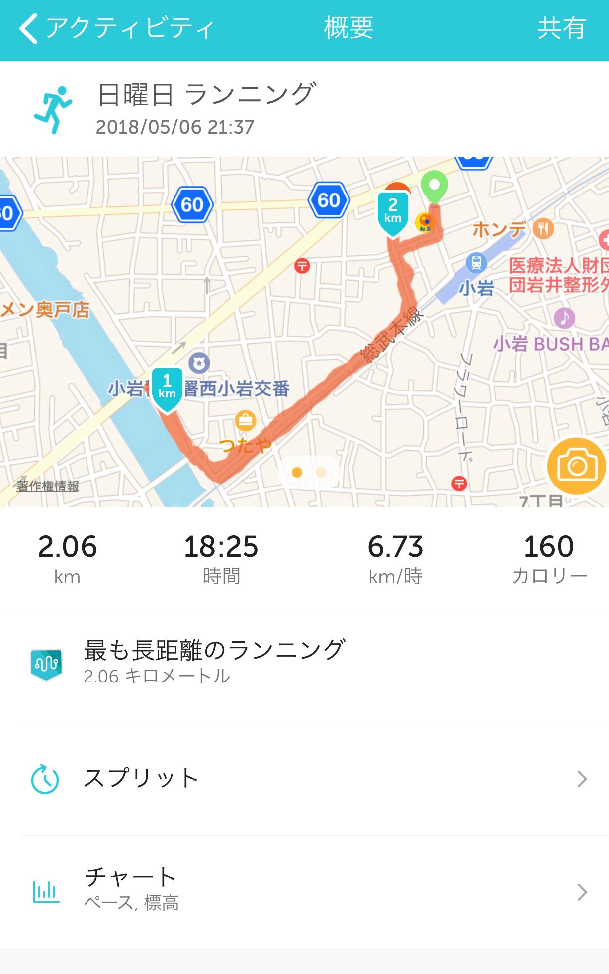 小岩菖蒲園【杜若】