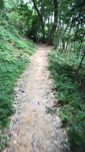 玄賓庵から檜原神社へ【三輪】