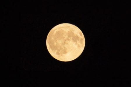 【能の言葉】新月が満月?