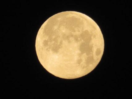 満月を新月という能の中、西の空には満月浮かぶ